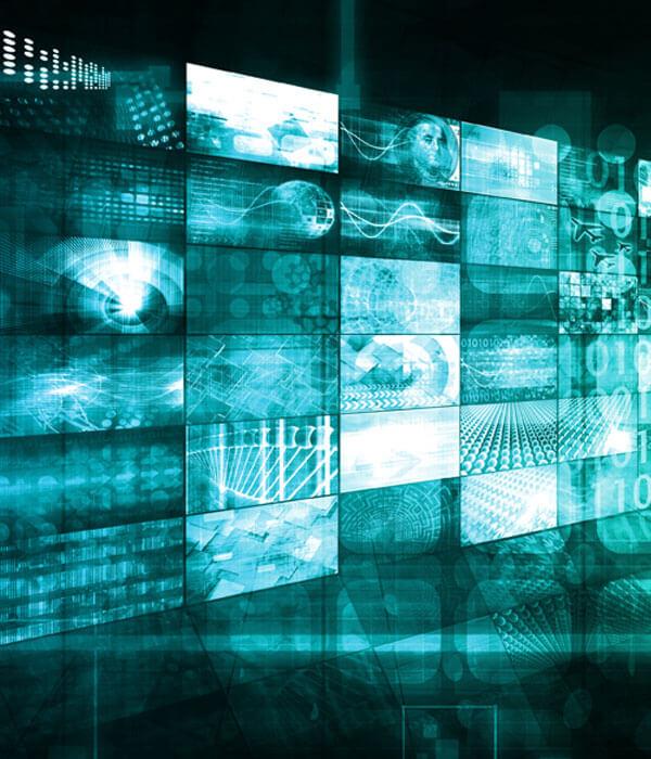 The New Data Economy